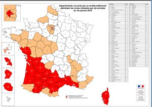 Carte infestation termites BAS RHIN